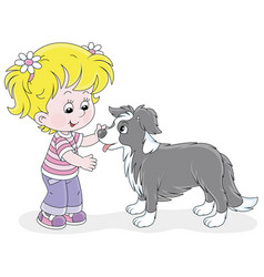 little girl playing with a small border collie vector image