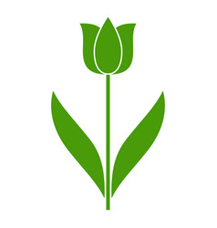 Tulip bud with leaves logo simple symmetry vector