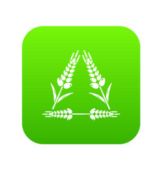 Winter-hardened wheat icon green vector
