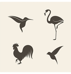Abstract birds vector image