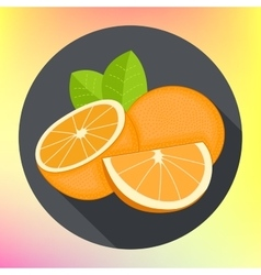 sweet oranges flat icon vector image vector image