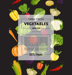 farm fresh vegetable banner with natural product vector image vector image
