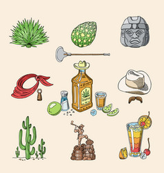 tequila shot mexican alcohol in bottle vector image