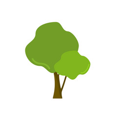 cartoon style two branch leaves isolated tree vector image