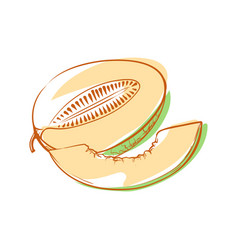 Ripe melon isolated icon vector
