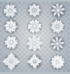 set of white paper flowers vector image