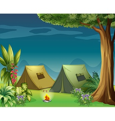 Tents in the jungle vector image vector image