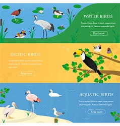 Birds horizontal banners set vector image vector image