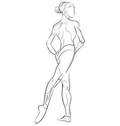 female anatomy drawing vector image
