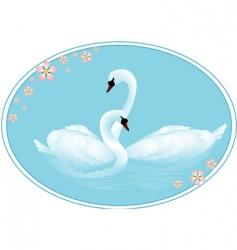 swan lake vector image vector image