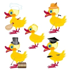 Cartoons on duck vector