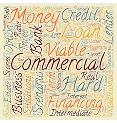 Commercial Hard Money Loans Three Business vector image