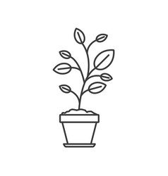 Monochrome silhouette of plant in flower pot vector