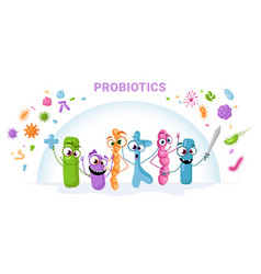 Probiotics protect against viruses and bacteria vector