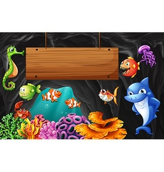 Sea animals swimming around wooden sign vector