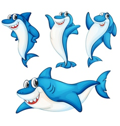 Shark series vector