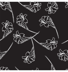 white lilies on a black background vector image