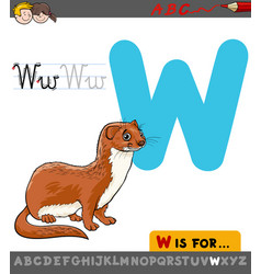 letter w with cartoon weasel vector image vector image