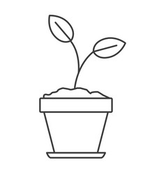 monochrome silhouette of plant in flower pot in vector image
