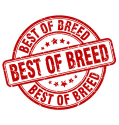 Best of breed red grunge stamp vector