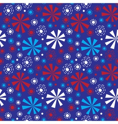 Fireworks on Independence Day vector