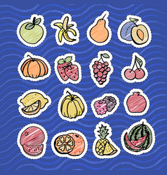 Fruit set in bright color on blue background vector