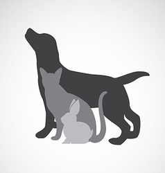 Group of pets vector
