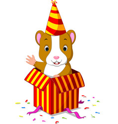 Hamster coming out of gift box vector