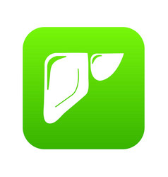 liver icon green vector image