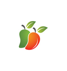 Mango fruit icon design vector