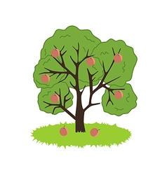 Peach Tree Icon vector