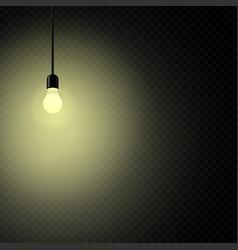 retro light bulb in dark transparent vector image
