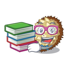 Student with book fruit marang is located in vector