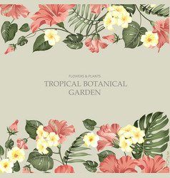summer vacation card tropical flowers plumeria vector image