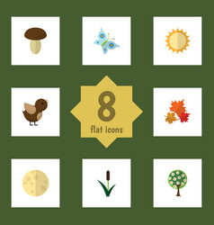 Flat icon nature set of solar tree cattail and vector