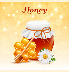 honey color concept vector image vector image