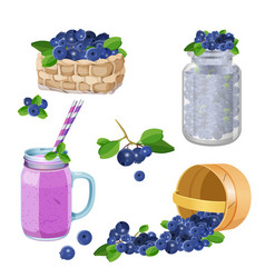 wooden underlying basket with blueberries vector image vector image