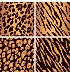 animal skin seamless pattern set Set leopard vector image