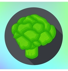Broccoli flat style pictogram vector