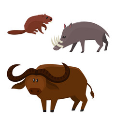 cute beaver buffalo bull babirusa in vector image