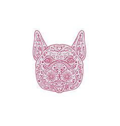 french bulldog head front mandala vector image