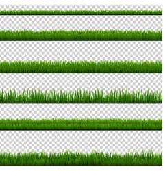 Grass border collection isolated transparent vector
