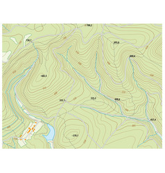 Imaginary topographic map vector