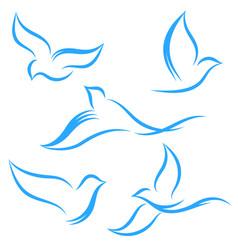 Logo birds vector