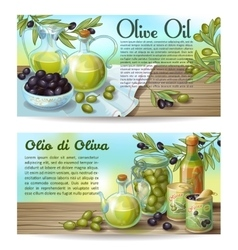 Olive Oil Horizontal Concepts vector