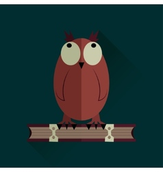 Owl on a book vector image