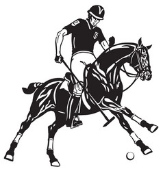 Polo player on black horse vector