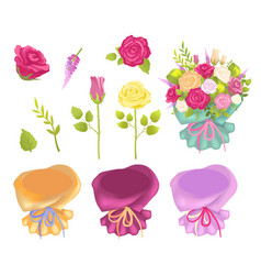 set of flowers and wrapping vector image