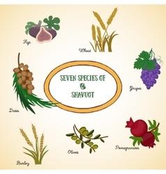 Seven species shavuot vector