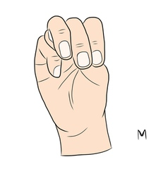 Sign language and the alphabetThe Letter m vector